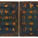 5-mixed-media-on-canvas-(-31-X-44-cm.)-2011